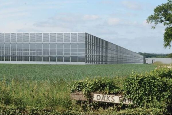 High-Tech Greenhouses Now Under Construction in East Anglia